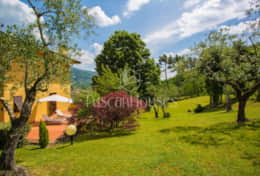 Villa-Steffy-Tuscanhouses-Vacation-Rental (9)
