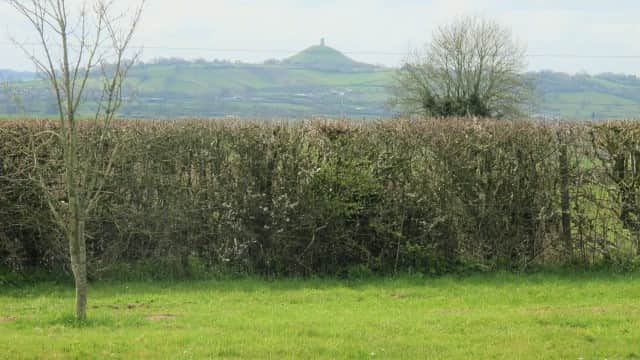 Our view of Glastonbury Tor