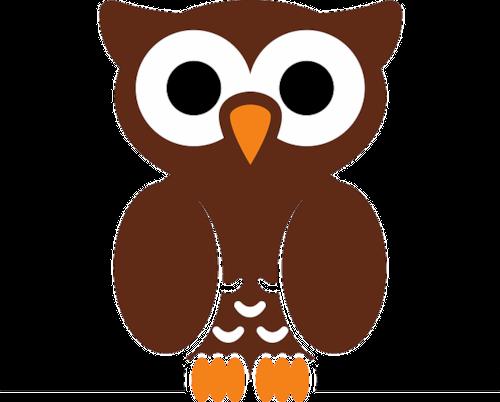Little Owls Caravan & Camping