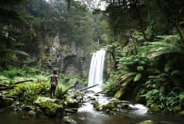 Otways Waterfall