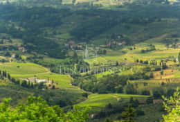 Panorama - Vacation Rentals - Tuscanhouses_ (39)