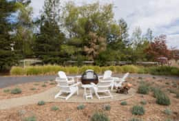 Fire pit area surrounded by fragrant lavender