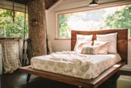 Nest Tree house bed - Asheville Glamping