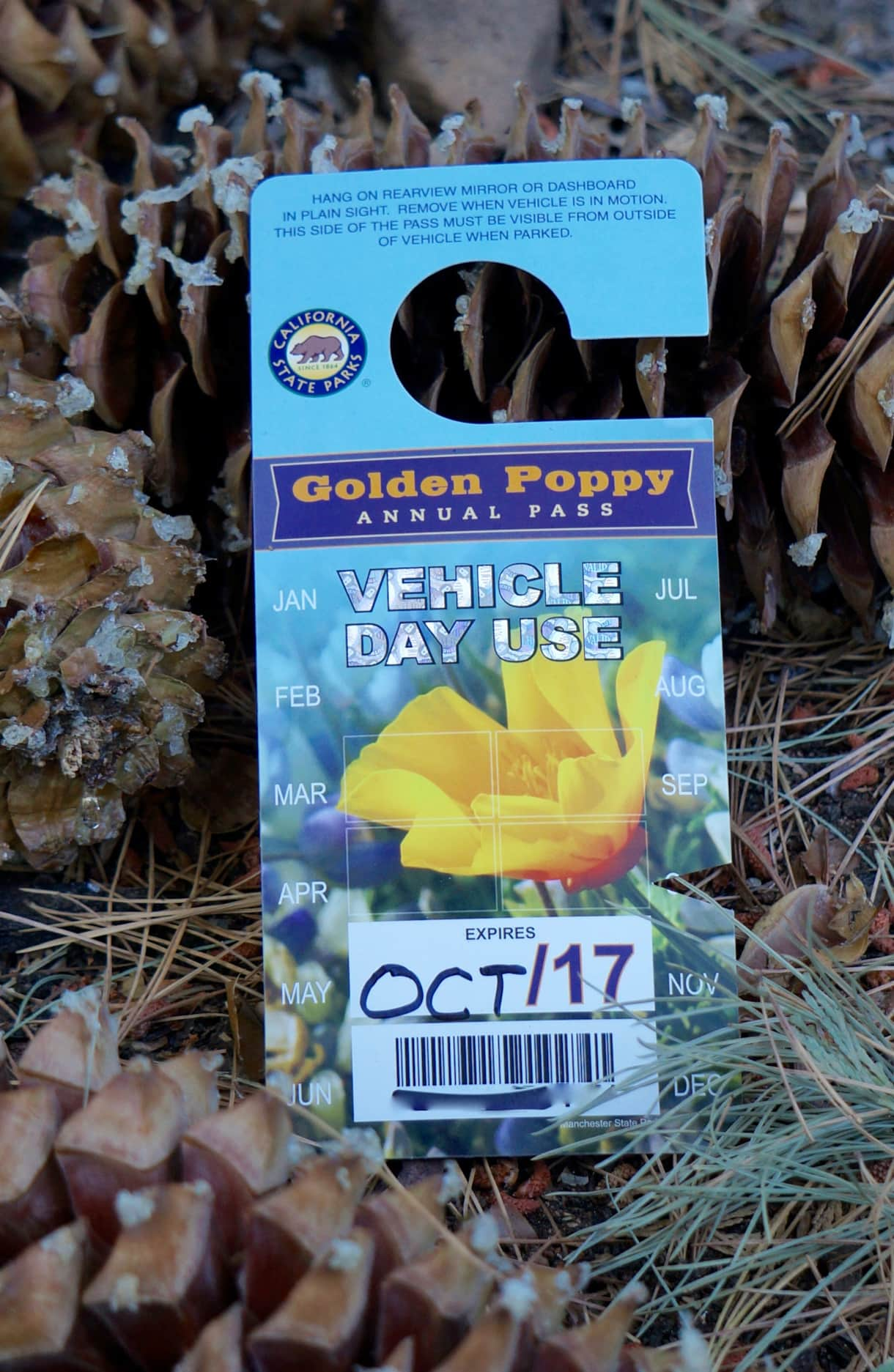 Golden Poppy Pass - free admission for 1 car to Big Trees State Park