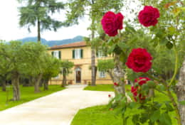 Villa Forte - Holiday in Tuscany - Tuscanhouses  (34)