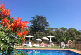 pool-apartment-la-palmera-sant-marti-empuries-costa-brava-villas-coll