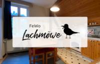 FeWo Lachmöwe