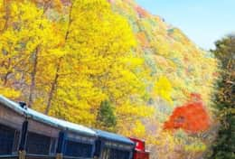 Jim Thorpe Scenic railway
