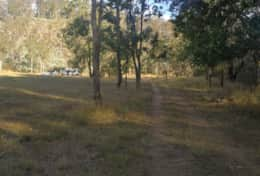 Picnic area with campers