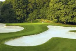 Horseshoe Ski and Golf Resort, skiing, tubing, and golf  - 10 minutes away!