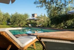 Agriturismo Montefalco, wine estate with apartments and pool