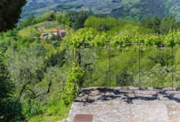 Holidays in Lucca-Villa dell'Angelo-Tuscanhouses -(95)