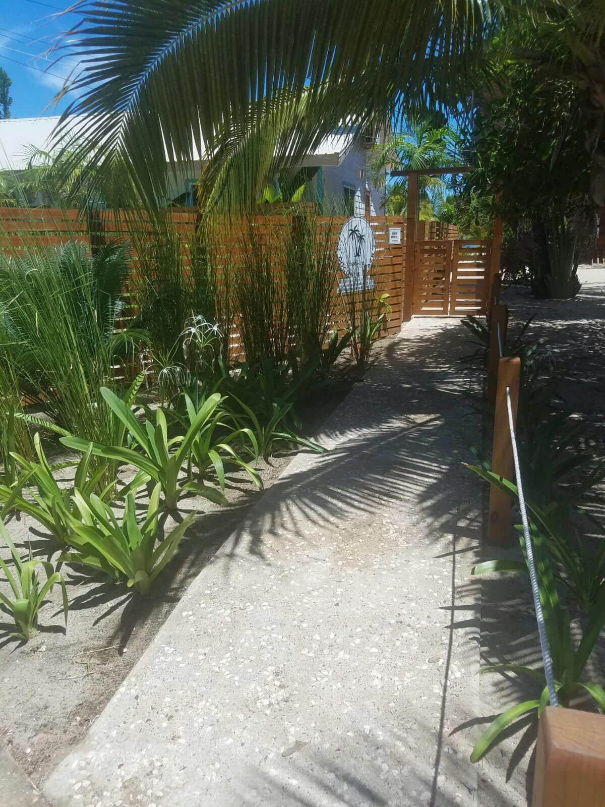 Path from Placencia sidewalk to the Coconut Beach Property