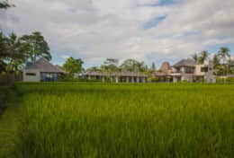 62. Villa Lumia Bali Overview from the Rice fields