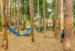 Enjoy an afternoon nap or a good book in the zen hammock garden