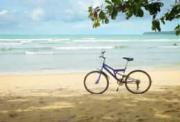 Bicycle rentals 3