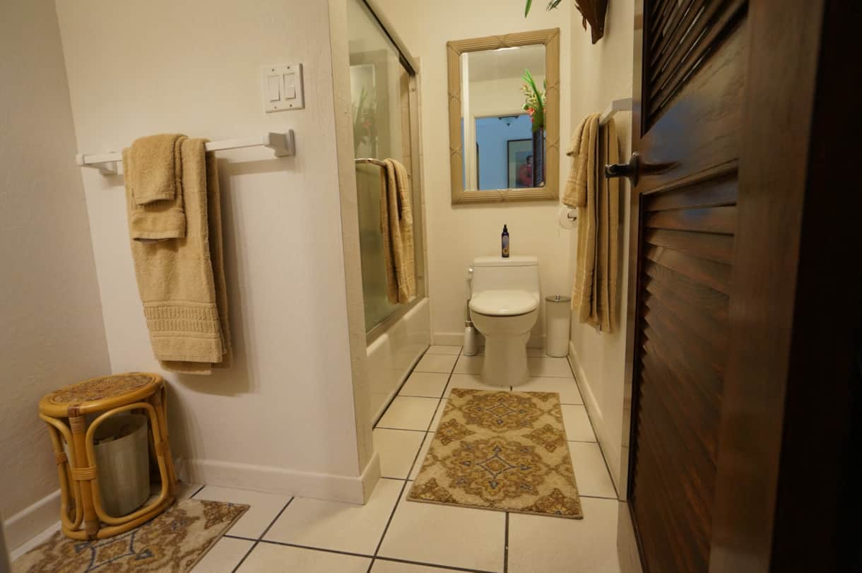 #14 Guest bath with laundry facilities
