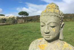 Short House, Chesil Beach, Dorset Buddha in the front east field