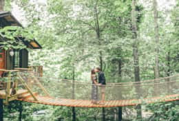 The Nest Treehouse- suspension bridge-Asheville Glamping