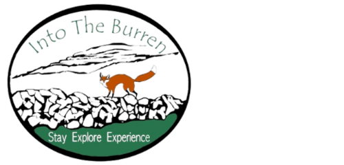 Into the Burren