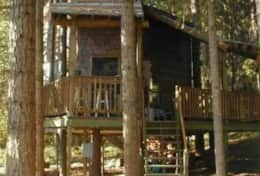 Tree House Before Skirting was Added
