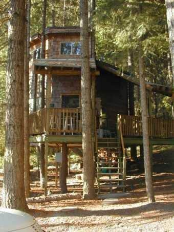 Tree House Tranquil-A-Tree Vacation Rental - Vacation Home