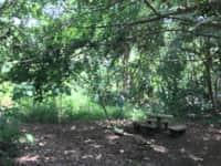 Camp Site with Tent - Per Camper