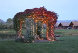 arbor lighted 2
