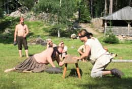 K46 Wallace Cottage – Årsunda Viking is a fun excursion try Viking games, eat like a Viking, etc