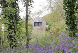 Writing-Shed-in-Springtime