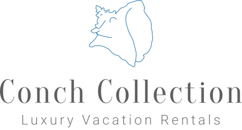 Conch Collection
